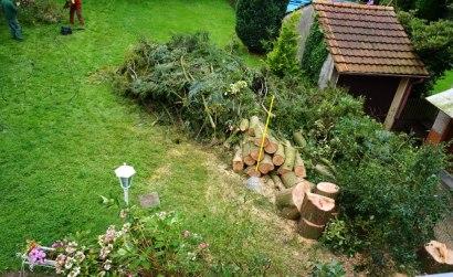 Traurige Überbleibsel, in unserem Garten darf er liegen.