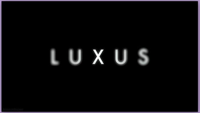 Lifestyle: Luxus * Verschwendung Oder Sinnvolle Ersatzbefriedigung