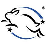 CCIC_logo