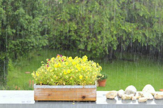 KK Regen ohne Ende 2016
