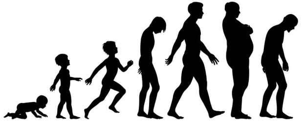 human-aging-processKK