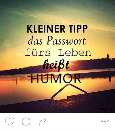 humor-kk